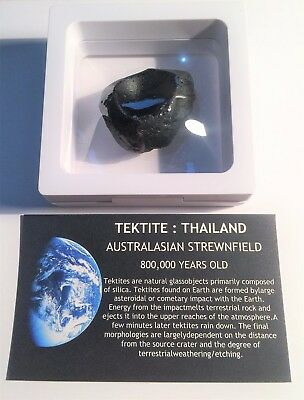 """RARE"" 29.7 Gram TEKTITE Museum Quality with stand and label"