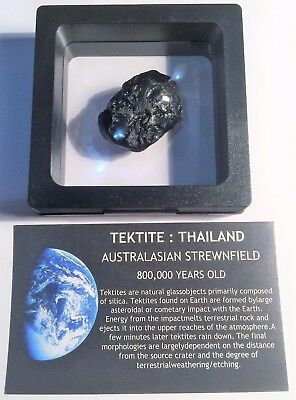 """RARE"" 13 Gram TEKTITE Museum Quality with stand and label"