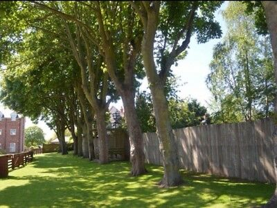 Land For Sale Bridlington, East Yorkshire