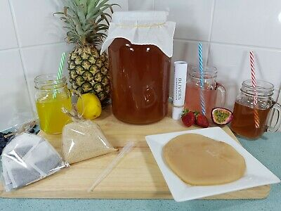 4.2L Kombucha Brew Kit, Fresh Organic Scoby, Starter Tea, Instructions, No Tap