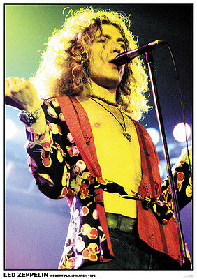 """Led Zeppelin Robert Plant on Stage 1975 Color Poster 23.5"""" x 33"""" UK Import"""