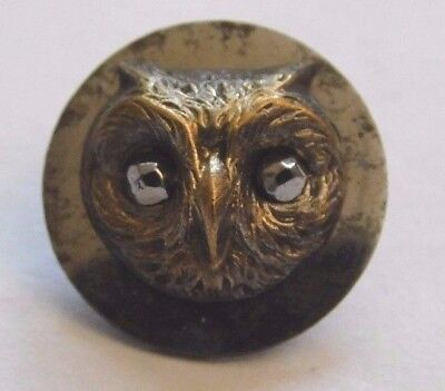 Antique Collectible Molded Brass Owl Head Button Cut Steel Eyes Steel Back