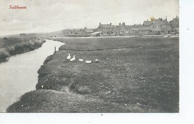 Printed postcard of Salthouse  Norfolk  in very good condition