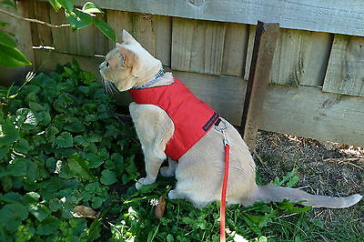 Mynwood Cat Walking Jacket Harness Vest Holster RED Adult cat or Kitten
