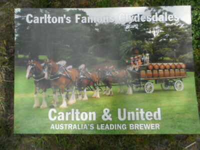 Carlton And United--Carlton's Famous Clydesdales--New Poster--Nice!!