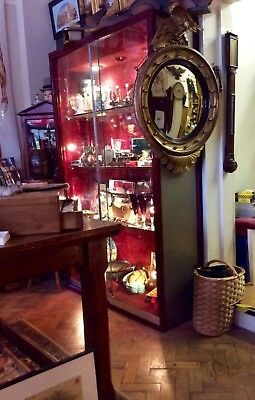 Large pair of museum display cabinets