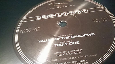 """Drum & Bass Jungle 12"""" Vinyl Classics Ram Records Valley Of The Shadows Andy C"""