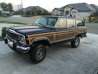 1990 Jeep Other  1990 Jeep Grand Wagoneer