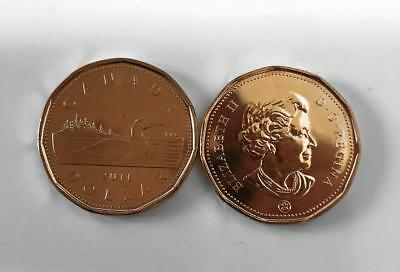 CANADA 2011 LOONIE UNC $1 ONE DOLLAR from Roll **No Tax**