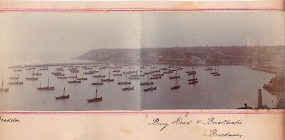 Silver Citrate Photograph Panorama Devon Berry Head Ship Fleet 1900