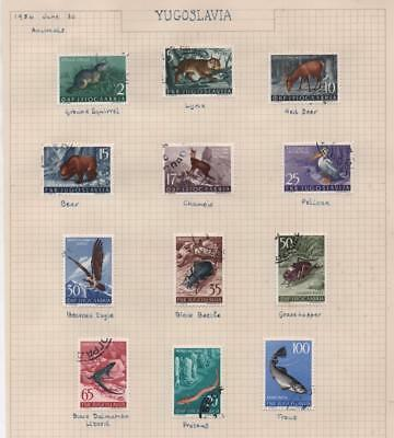 YUGOSLAVIA: 1954 Animals Examples - Ex-Old Time Collection - Album Page (11368)