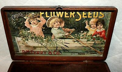 RARE Antique D M FERRY OAK SEED BOX Store Display Children 11x6 Color Litho NICE