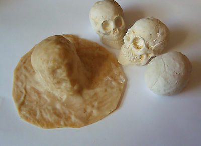 SKULL MOLD MADE FROM LATEX 30mm X 50mm