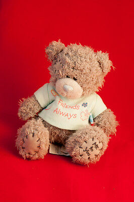 20cm Approx Friends Always Me To You Bear Friends Always