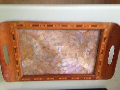 Wooden tea tray with inlaid marquetry and butterfly wings Taxidermy
