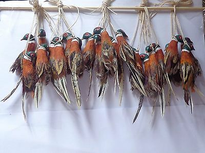 1:12 Scale One Hanging Pheasant Dolls House Miniature Game Bird (ONLY ONE)