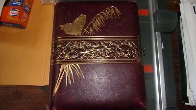 Harrisburg PA CDV & Cabinet Photo Album- Sweney Family - 54 Pix- Pennsylvania
