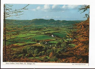 Slieve Gullion,Forest Parks,County Armagh, Postcards