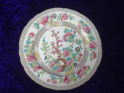 Aynsley China INDIAN TREE Plates x 5