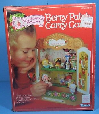 Berry Patch Carry Case MIB