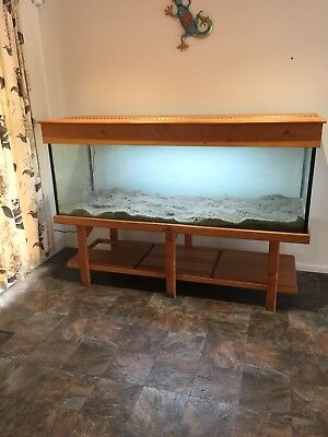 6ft x 2ft Fish Tank With Hood And Stand