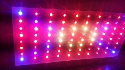 800W LED Grow Light Full Spectrum Lamp Indoor, plant growing, flowering