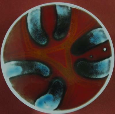 Poole Pottery Small Early Delphis Dish Shape 49 Margaret Anderson