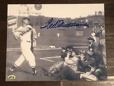 Ted Williams Autographed 8x10 Picture ::::::::...Certified