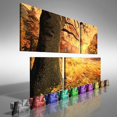 Fields of Tree Leaves Duo Offset Canvas Print Large Picture Wall Print
