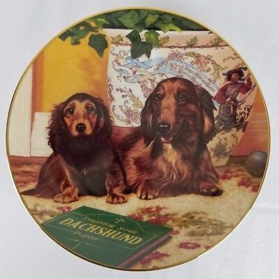 DACHSHUNDS by The Danbury Mint - Come Here? by Christopher Nick - Plate