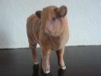 Beswick Highland calf in matt model 1827D.Animals, Cattle/ Farm Animals
