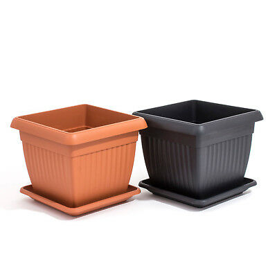 Small/Large Corinthian Square Plant Planter Terracotta/Black Plastic Flower Pot