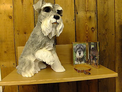 Schnauzer Urn pet memorial casket will hold the ashes of your dog