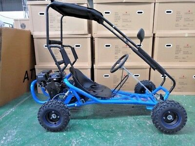 ZUMA SIZZLER 196cc RC Kids Go Kart Buggy Fully Automatic Quiet 4 Stroke Engine