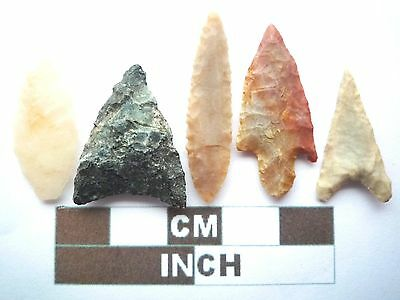 Neolithic Arrowheads x5, High Quality Selection of Styles - 4000BC - (X054)