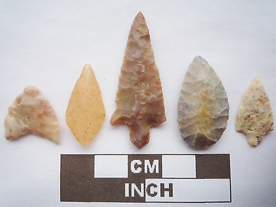 Neolithic Arrowheads x5, High Quality Selection of Styles - 4000BC - (Q073)