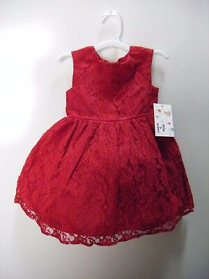 Mia & Mimi  Girls Fancy Luxe Lace Dress Special Occasion/ Princess