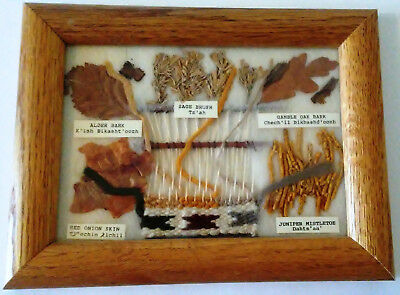 """Framed Navajo Dye Chart By Christine Lewis With Real Flora & Woven Loom~ 8"""" x 6"""""""