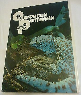 Amphibians, Reptiles - Collectible Soviet Set Of 22 Cards