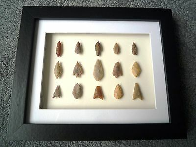Neolithic Arrowheads in 3D Picture Frame, Authentic Artifacts 4000BC (X007)