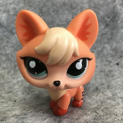 Littlest Pet Shop LPS Collection Figure Loose Toy #1812 Orange Fox Dog