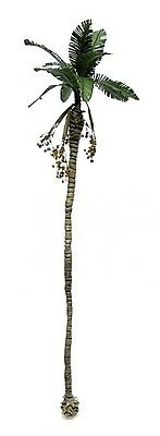 New Betel Palm Tree Model 1/72 Scale. Tps-005 25 Cm.height.