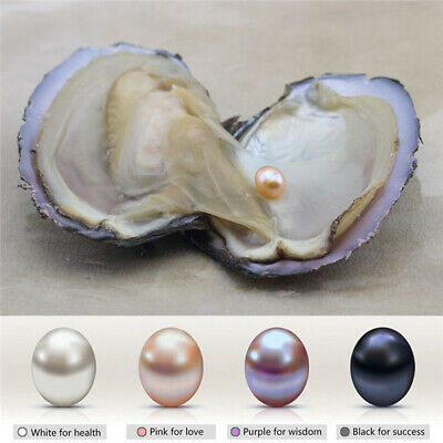 Natural Pearl Oyster With Real Pearl 7-9mm Freshwater Pearl Vacuum Packaging