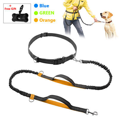 Hands Free Dog Leash Dual Handle Reflective Bungee Leash for Pet Running Jogging
