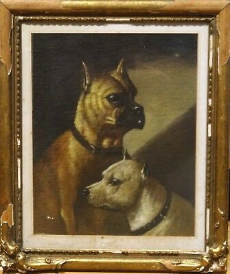 Early 20th English School Century Portrait of 2 Dogs Antique Oil Painting