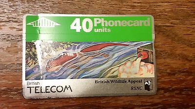British Telecom Old Phonecard BT Rare Wildlife 40 Units Collectable Otter RSNC
