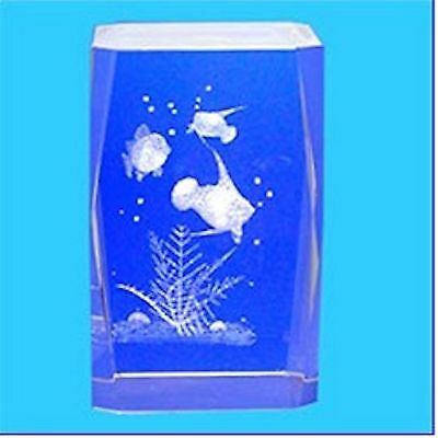 3D Laser Engraved Optical Crystal ~ ANGEL FISH