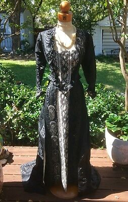 Turn of the century 2 piece gown by Whitting Robes of Buffalo NY-