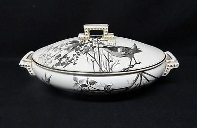 Rare Brown Staffordshire ORNITHOLOGY Tureen ~ BIRDS 1870