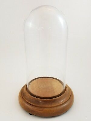 """Vintage Glass Cloche Wood Base Display Cloche Dome 10"""" Stand"""